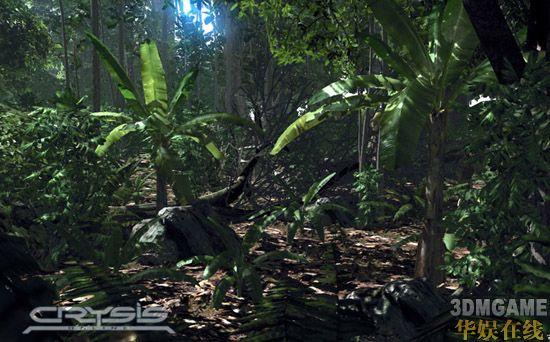 近日crysis online公布了《孤岛危机》(crysis)多张游戏画面,这些图片