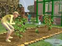 [模拟人生2 缤纷四季]乐趣无穷的园艺生涯