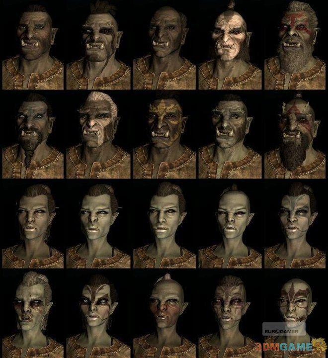 <b>《上古卷轴5:天际》可选种族预设脸型最新截图赏析</b>