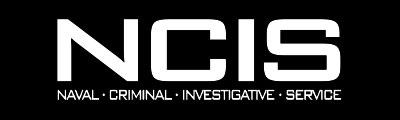育碧即将推出动作冒险游戏《海军罪案调查处》