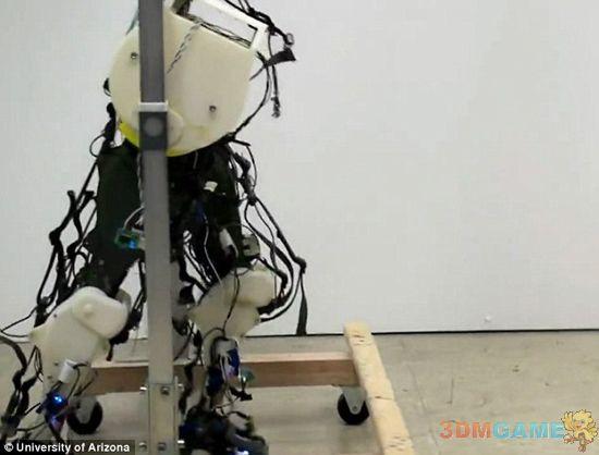 美国科学家最新研制首款超生物精确行走机器人