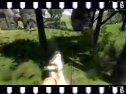 联机对战视频2-1