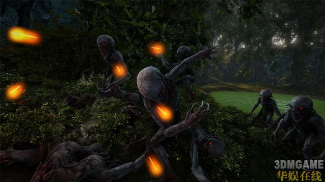 《巫师2:国王刺客》PC系统详尽需求公布,新截图放出