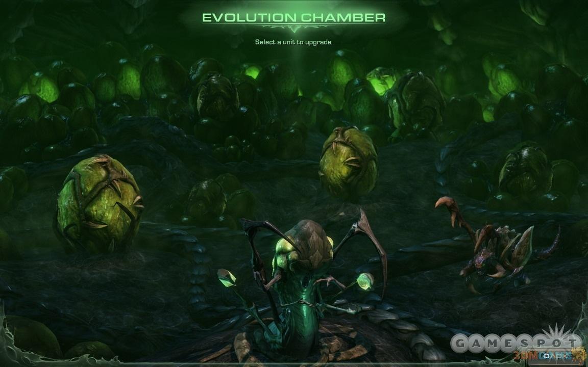 《星际争霸2:虫群之心(Starcraft II: Heart of the Swarm)》