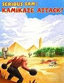 英雄萨姆:自爆队的袭击