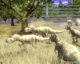《野生动物园大亨2:恐龙世界(Wildlife Park 2:Dino World)》