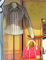 莱西史密森时装档案 英文免安装版