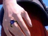 上古卷轴5:天际 小型花环戒指MOD