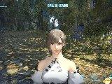 最终幻想14 详细评测 画面人设操作音乐游戏系统
