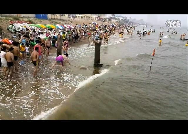 海滩消暑遭遇不速之客