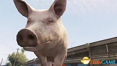 《侠盗猎车5》动物Mod视频
