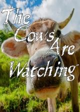 奶牛正在看 英文免安装版