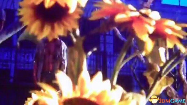 Bethesda又放出神秘视频 燃烧的花儿等着被蹂躏?