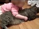 小宝宝与喵星人在一起得小心了