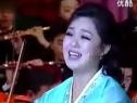 金正恩妻子新年音乐会的演出片段