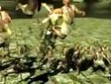 《真三国无双7》DLC新武器系统效果展示