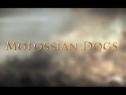 《罗马2:全面战争》DLC预告