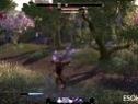 《上古卷轴OL》至尊版游戏视频