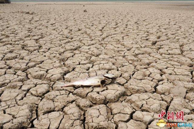 <b>全国12省区遇严重干旱灾情 局部地区断水粮食绝收</b>