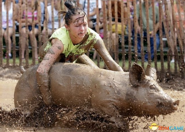 """美国""""人猪摔跤""""赛现场图赏 妹子快放开那个猪头"""