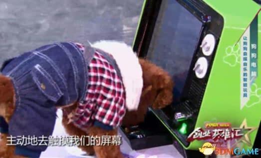 一台给狗用的电脑DOG PC登央视 获500万元投资