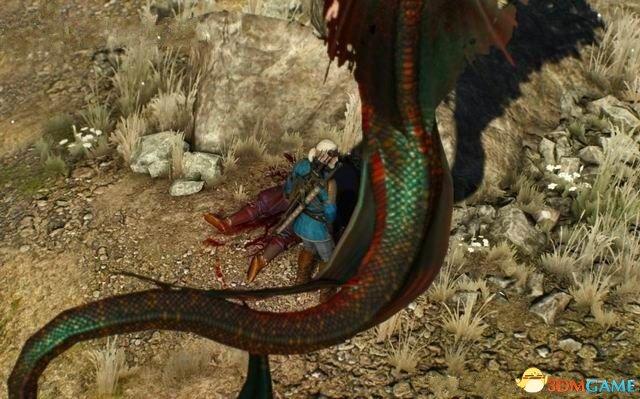 调查地上的鳞片,确定抓走奈斯的不是一般的女海妖.
