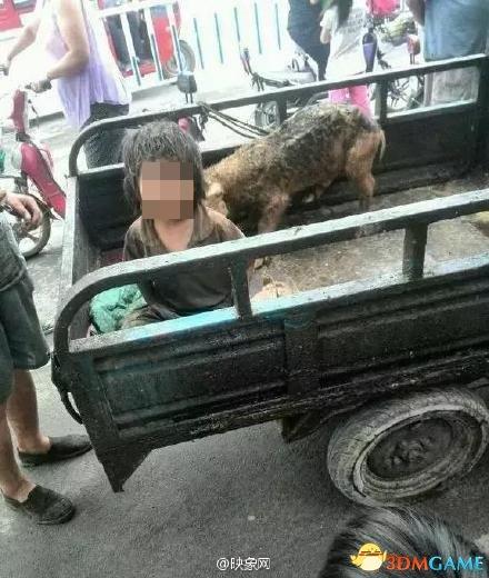河南7岁男童被曝遭母亲虐待与猪共处 至今不会说话