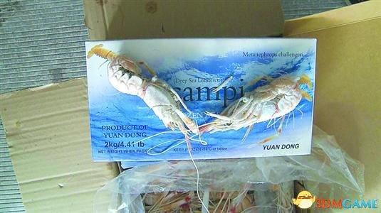 1.2万箱过期冷冻螯虾入市 部分假冒太湖银鱼出售