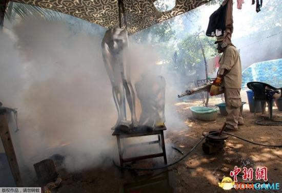 专家称寨卡威胁超埃博拉 建议用高毒性农药灭蚊