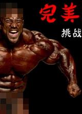 完美挑战 简体中文免安装版