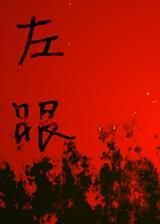 左眼 简体中文免安装版