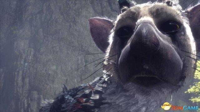 《最后的守护者》IGN 7分 非常感人但操控太烂