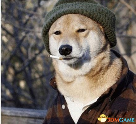 大冬天的一个人!真是寂寞如狗啊…囧事杂闻搞笑图