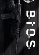 BIOS 英文免安装版