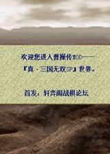 三国无双战略版 简体中文免安装版