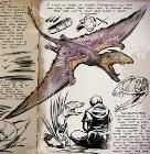 双型齿翼龙