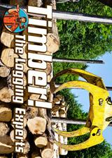伐木工!木材专家 英文免安装版