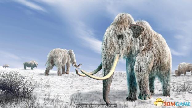 复活灭绝生物哪一种合适?重新填补生态系统空白