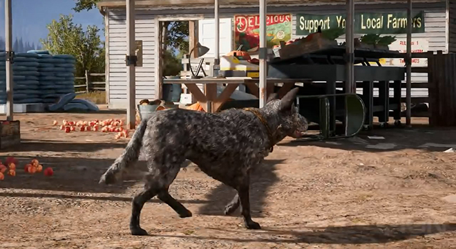 《孤岛惊魂5》可爱狗狗宣传片 聪明能干会卖萌