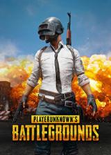 http://www.3dmgame.com/games/playerunknownsb/