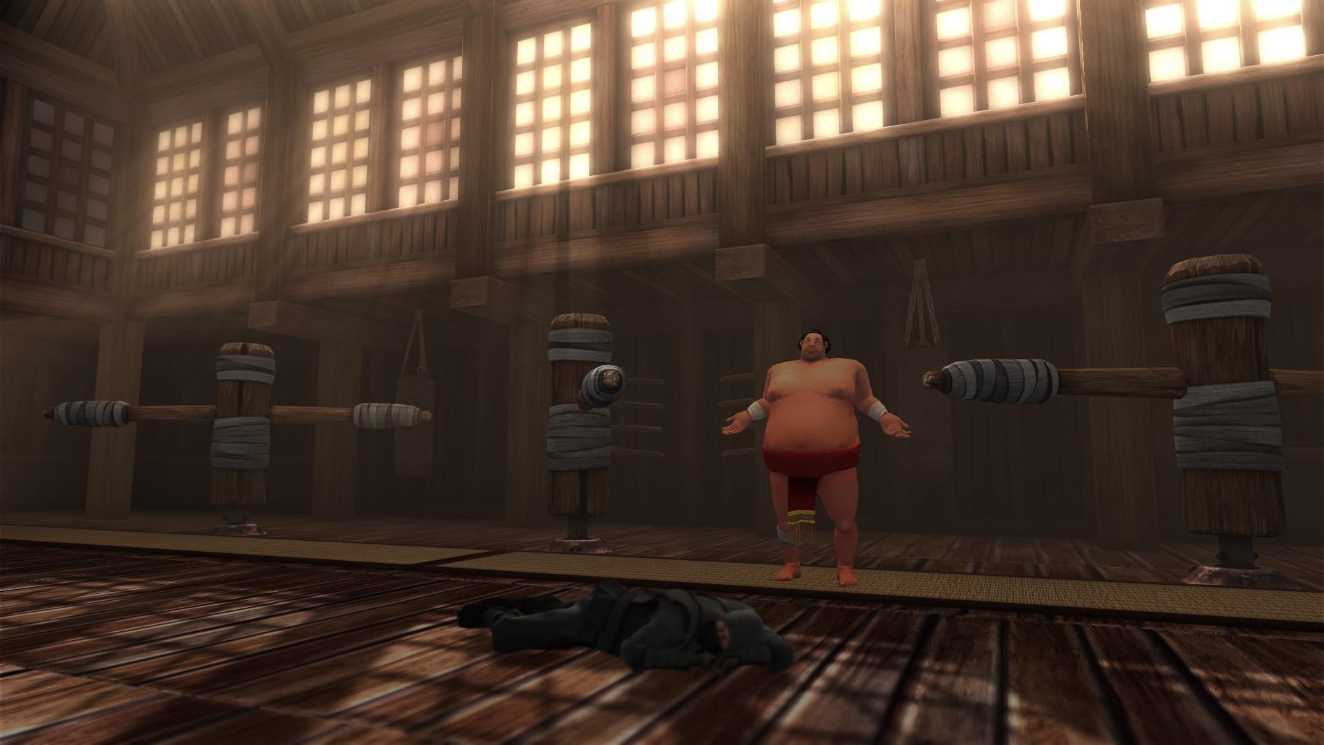 相扑人 游戏截图