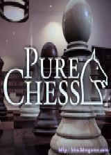 纯正国际象棋 欧版