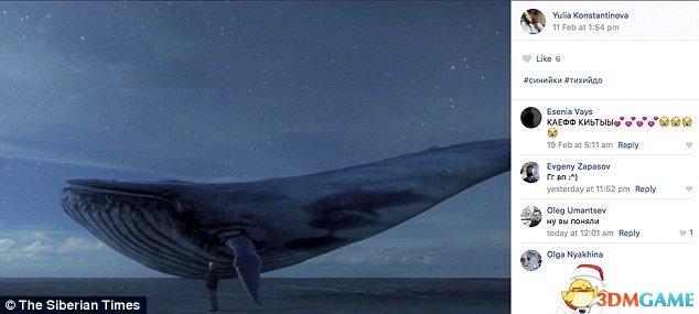 俄死亡游戏蓝鲸煽动青少年自杀 多国政府发警告