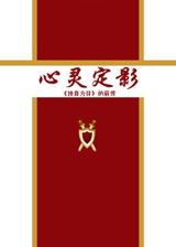 心灵定影 简体中文Flash汉化版