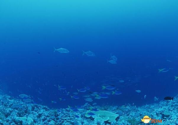 挑战欧美科学霸权:中国将建国家海底科学观测网!
