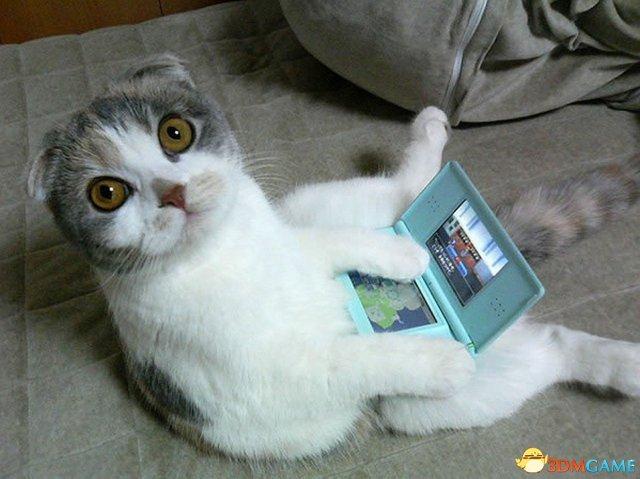 任天堂再也不忍了! 已破解的3DS遭到大规模封禁