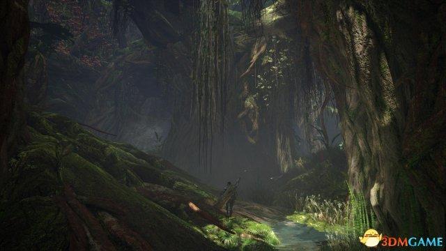 《怪物猎人世界》情报:正统续作 并非是开放世界