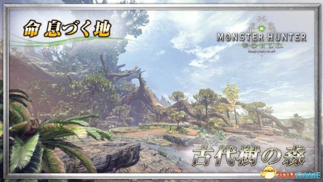 《怪物猎人:世界》首个演示!完全动态的世界