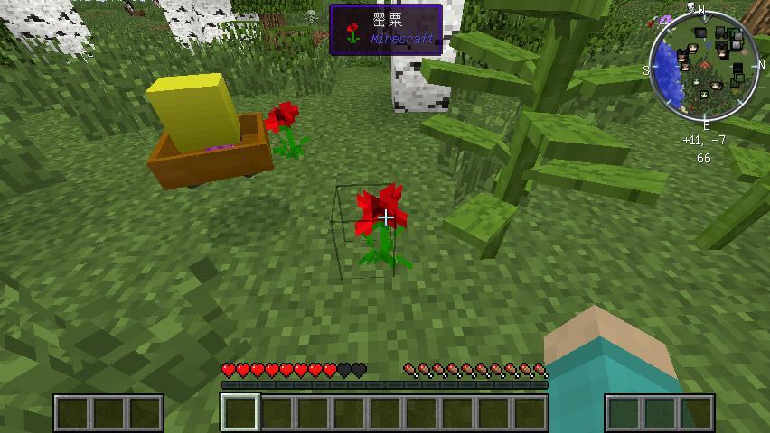 我的世界 v1.7.10红玫瑰城地图