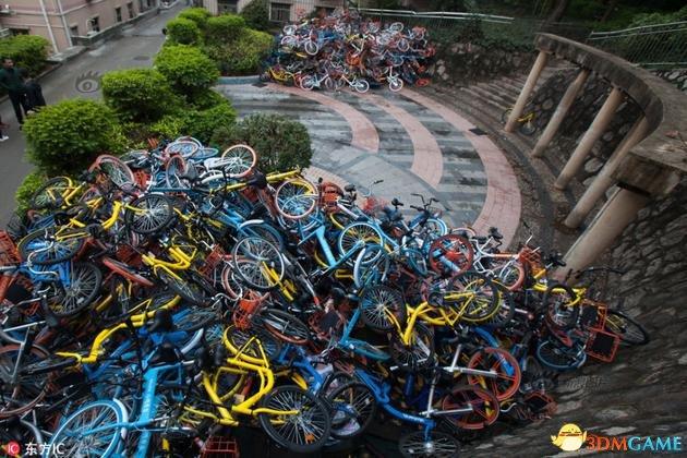 国民素质太差?一条街道200多人仍管不好共享单车
